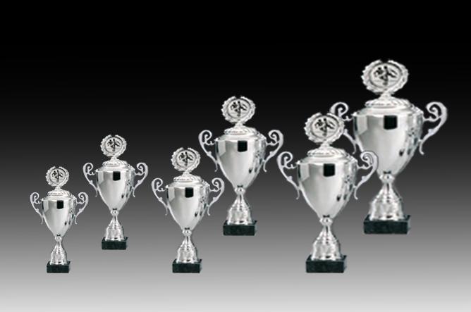 Pokale aus 6er Pokalserie: 69120 - 69125, 29,0 - 39,5 cm