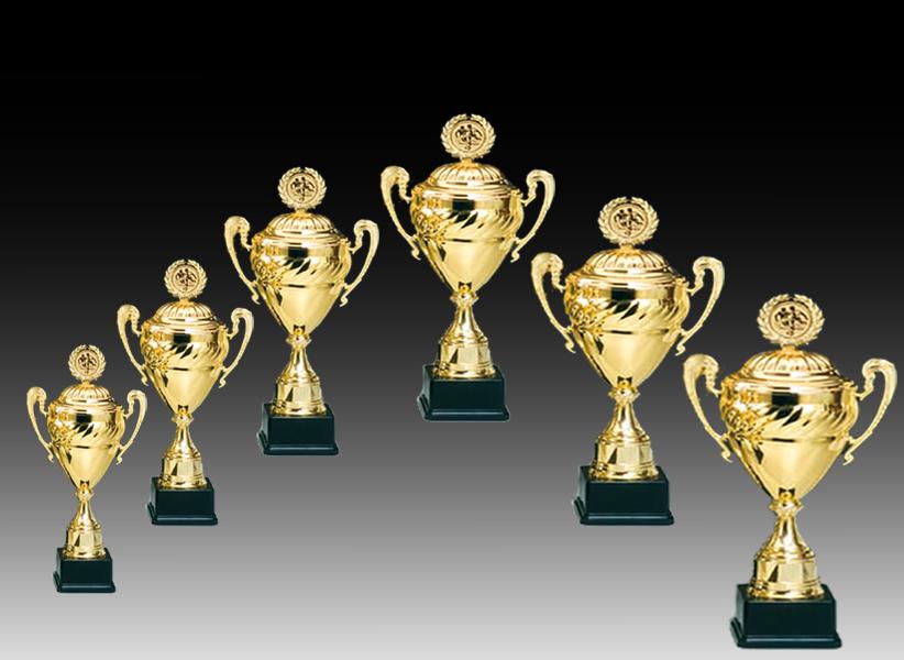 Pokale aus 6er Pokalserie: 68580 - 68585, 36,0 - 49,0cm