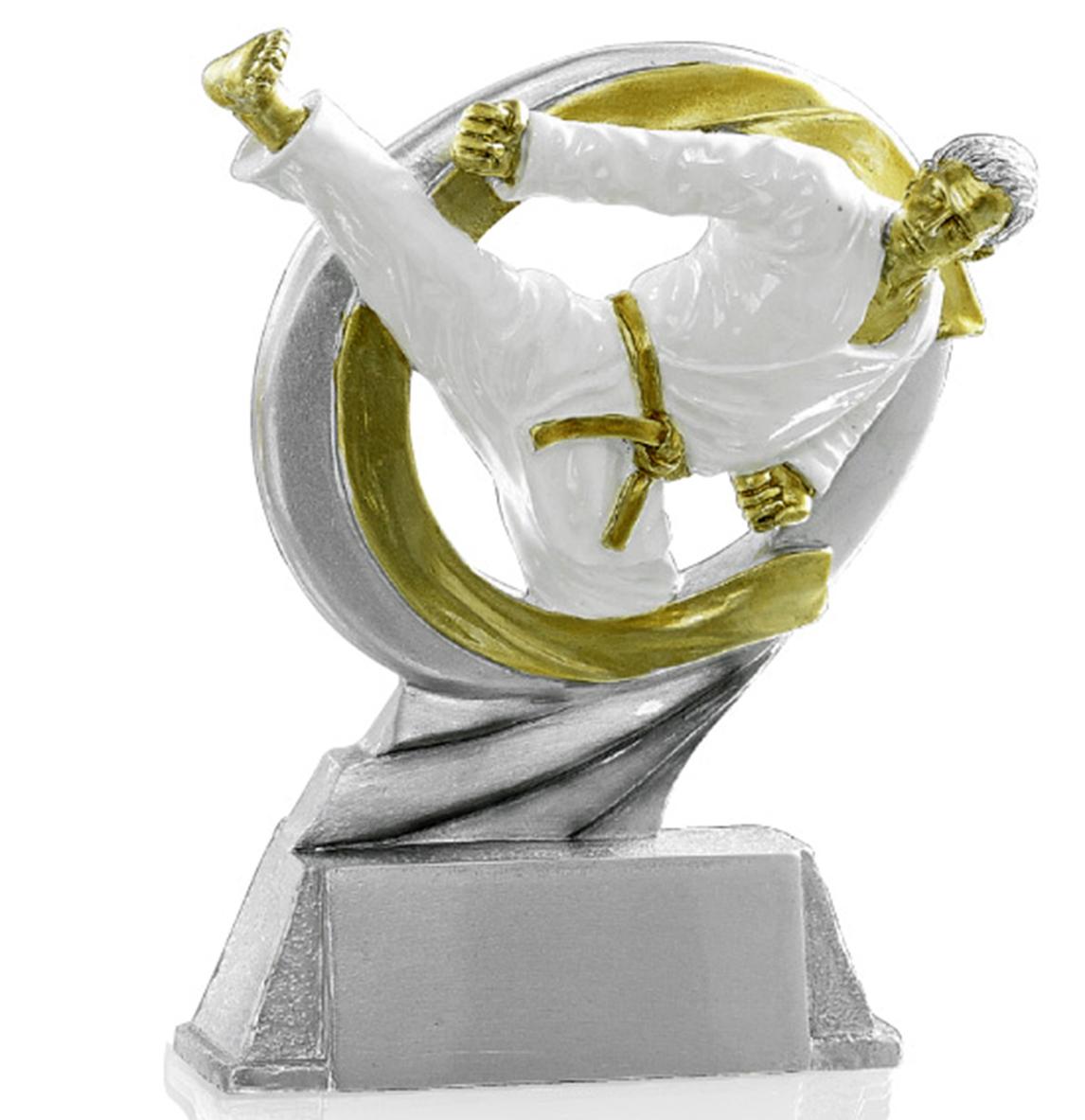 Pokale Kampfsport Figur: 9-106-71413 in 17 cm