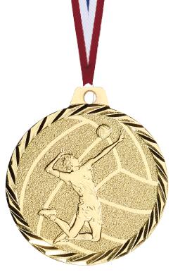 Volleyball Medaille geprägt Medaillen Premium hochwertig edel